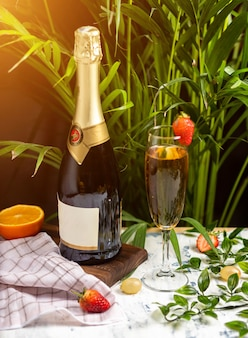 Champagne, prosecco bottle with two filled glasses on a table with citrus fruis and herbs