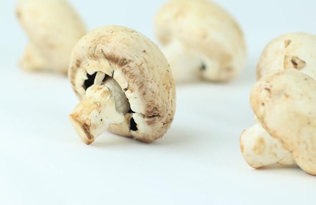 흰색 배경에 고립 된 샴 피뇽 버섯