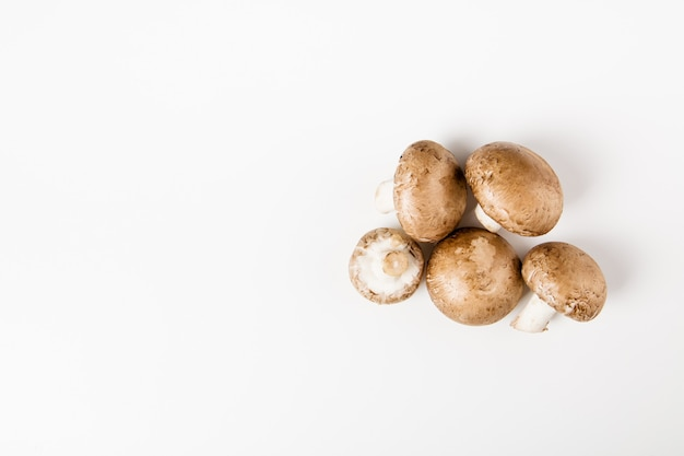 Champignons mushrooms isolated on the white background