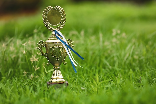 Champion golden trophy placed on ground