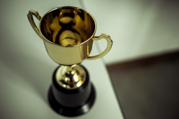 Champion golden trophy placed on table .