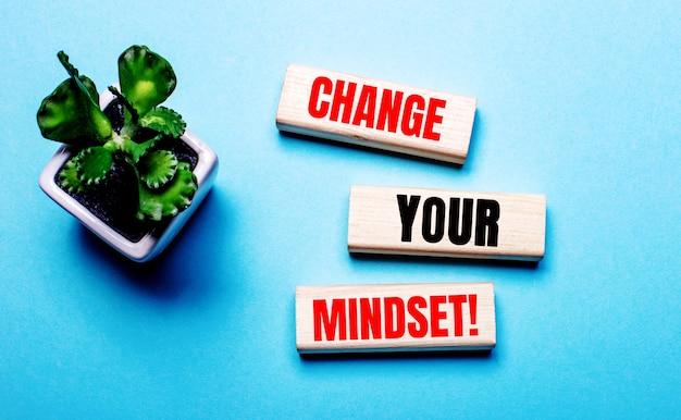 Change your mindset is written on wooden blocks on a light blue background near a flower in a pot.
