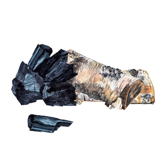 木炭と薪。白樺の木と黒い石炭の部分。水彩画。