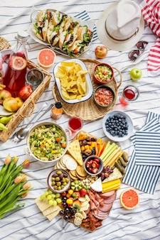 Charcuterie board with cold cuts, fresh fruits and cheese on a picnic cloth
