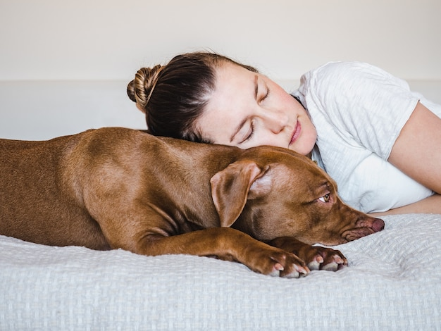 갈색의 매력적이고 사랑스러운 강아지와 귀여운 여자. 클로즈업, 실내. 일광. 보살핌, 교육, 복종 훈련, 애완 동물 기르기의 개념