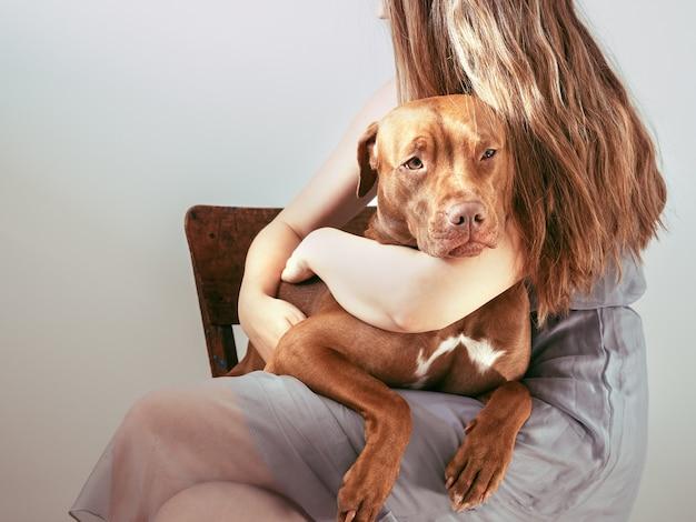 갈색의 매력적이고 사랑스러운 강아지와 귀여운 여자.