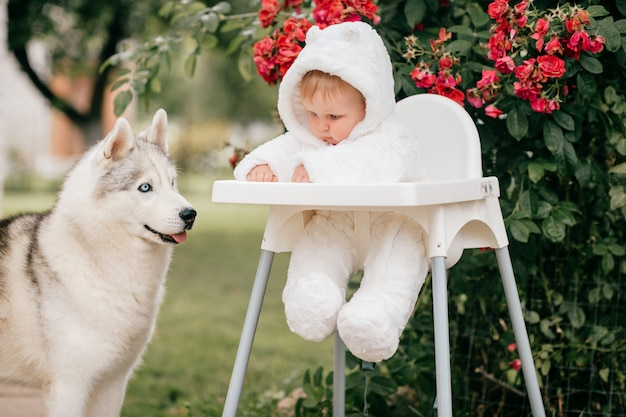 Charming baby boy in bear costume sitting in high chair with husky dog looking at him outdoor