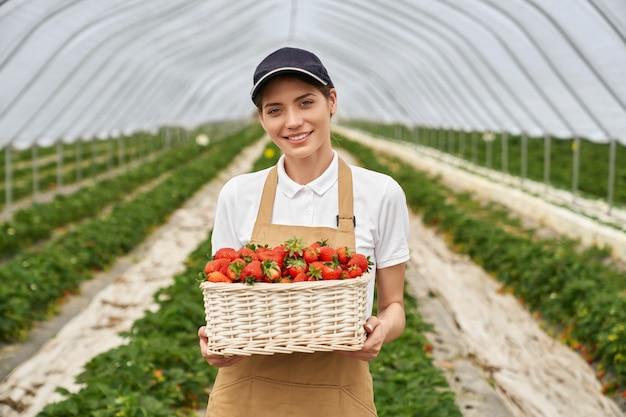 Очаровательная кавказская женщина, держащая белую корзину со свежей клубникой, позируя в теплице. приятная женщина-фермер в кепке и фартуке улыбается и.