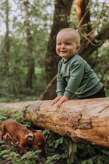 매력적인 귀여운 소년은 녹색 숲 배경에 서서 통나무와 닥스훈트를 잡고 있습니다.