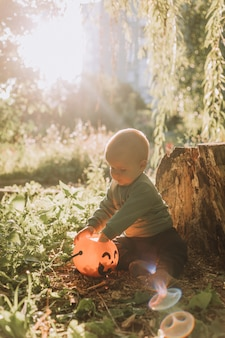 Charming cute baby boy with pumpkin basket for sweets is sitting under a spreading willow at sunset