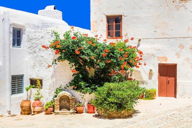 낙소스 섬에있는 구시 가지의 매력적인 꽃 거리. 그리스