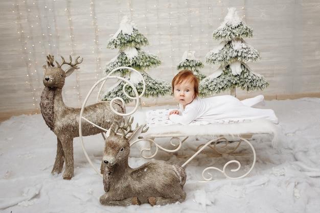 크리스마스 눈 썰매가 사슴 주위에 누워 있는 매력적인 소녀, 스튜디오 촬영.