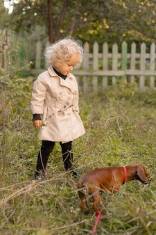 Charming little curly blonde girl in a white linen raincoat walks with a dwarf dachshund on a leash