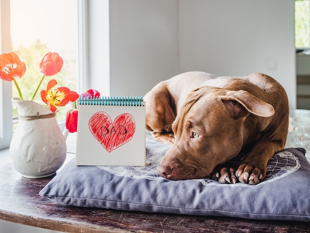 Charming puppy and heart drawing. side view