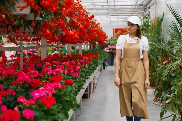 大きなモダンな温室を歩く魅力的な女性