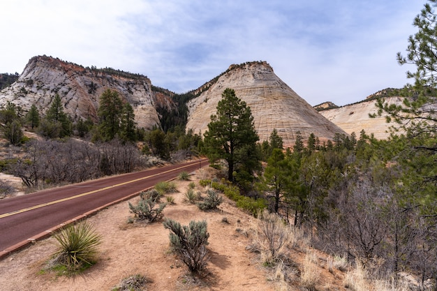 Checkerboard mesa at zion national park