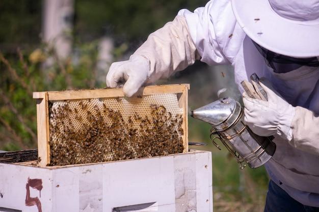 ミツバチをチェックして煙を使う