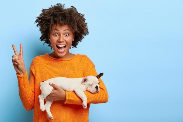 쾌활한 아프리카 계 미국인 여성이 평화의 몸짓을하고, 좋은 하루를 즐기고, 잠자는 강아지를 운반합니다.