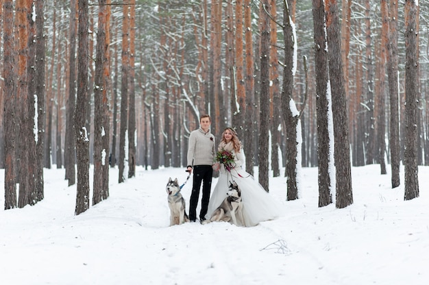 Веселые жених и невеста с двумя сибирских хаски ставят на фоне снежного леса.