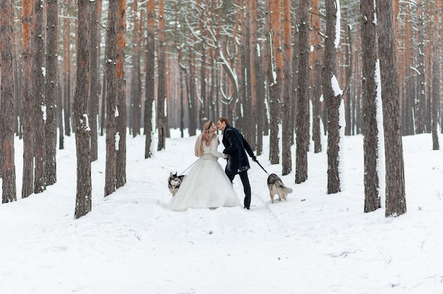 Cheerful bride and groom with two siberian husky are posed on background of snowy forest.