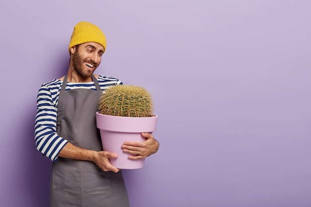 Cheerful caring florist decorator holds pot with big cactus