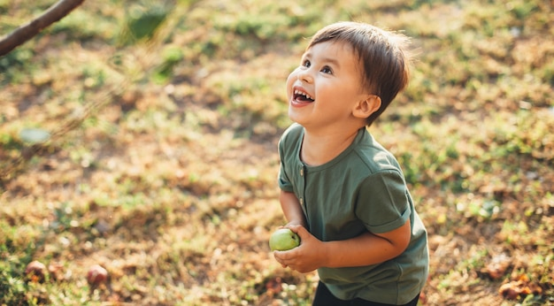 Cheerful caucasian boy holding an apple and looking up at the tree while playing in a field during the international children's day