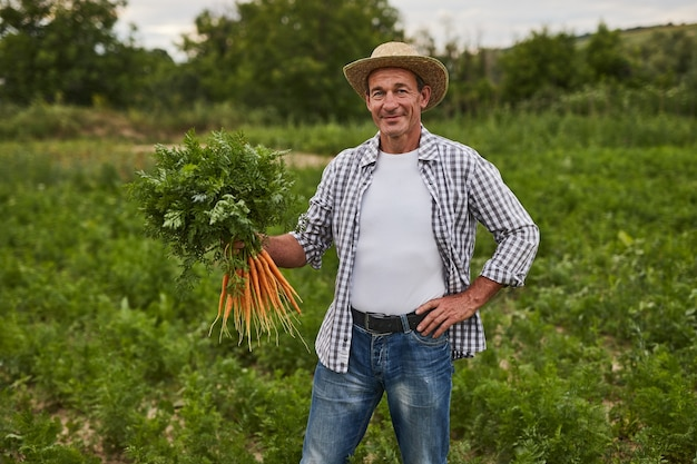 フィールドに新鮮なニンジンを持つ陽気な農家