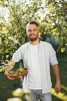 庭に有機リンゴを持つ陽気な農家。籐のかごの中の緑色の果物。