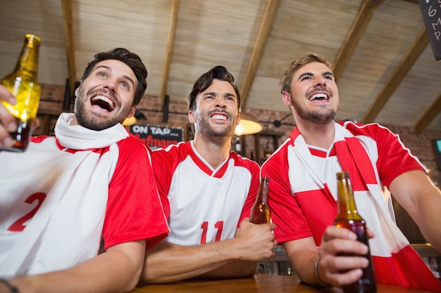 Cheerful friends holding beer bottles