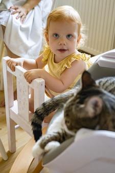 アームチェアでリラックスした猫とポーズをとってエレガントな黄色のドレスを着た陽気な面白い赤毛の少女