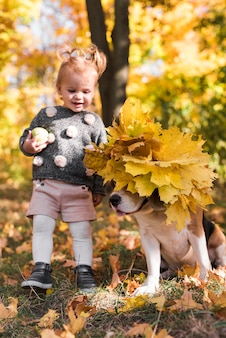 Cheerful girl looking at beagle dog wearing autumn leafs in forest