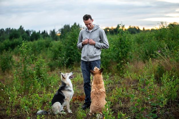 Веселый парень в повседневной одежде тренирует послушных собак, проводя время на природе во время заката
