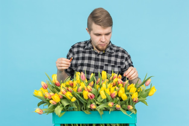 Cheerful handsome man florist with box of tulips on blue background