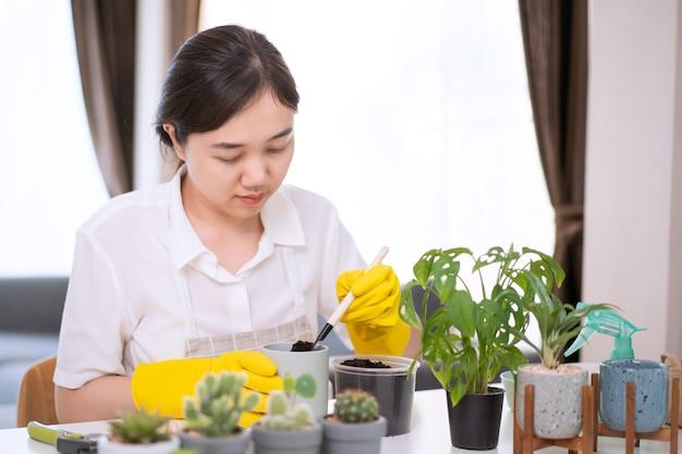 部屋の小さな観葉植物に水をまく陽気な幸せなアジアの女性がクローズアップ、水スプレーを使用して植物に優しく水をまきます。アジアの幸せな女の子は、サボテンと観葉植物を植えて水をまくのを楽しんでいます。