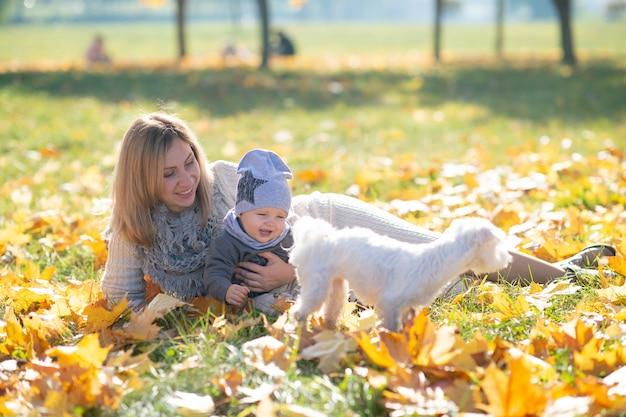 Жизнерадостная мать и ее милый ребенок в парке осени играя с маленьким щенком.