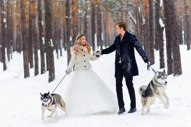 쾌활한 신혼 부부는 두 시베리아 강아지와 함께 눈 덮인 숲의 흔적을 걷는다.