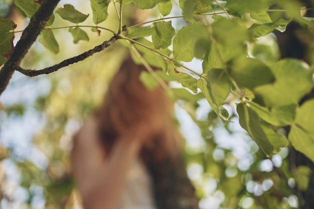陽気なきれいな女性の緑の木の森のレクリエーション
