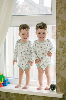 Cheerful twins - brothers stand on a window sill