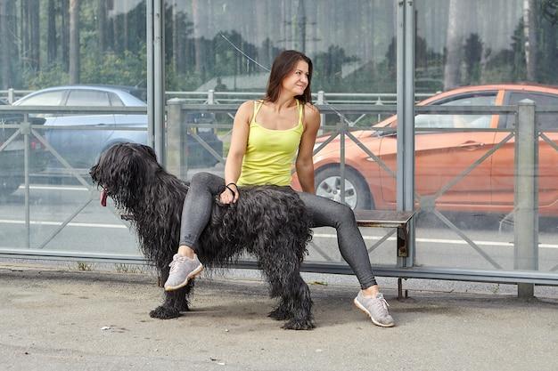 검은 briard와 쾌활 한 여자는 도시 거리에서 대중 교통을 기다리고 있습니다.