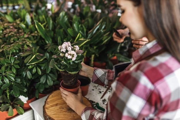 Веселый работник в магазине зеленых домашних растений. Premium Фотографии