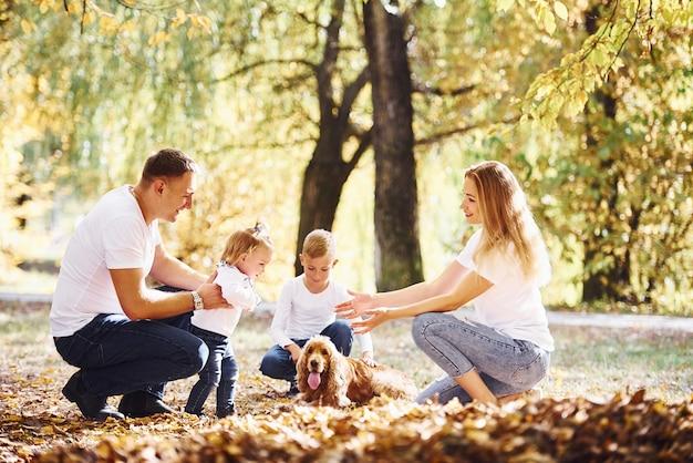 쾌활한 젊은 가족은 함께 가을 공원에서 휴식을 취합니다.