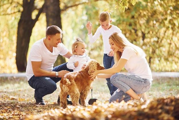 개와 함께 쾌활한 젊은 가족은 가을 공원에서 함께 휴식을 취합니다.