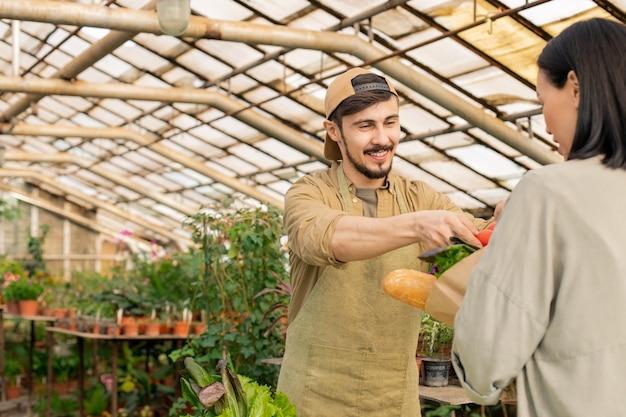 Веселый молодой фермер в кепке и фартуке кладет овощи в сумку клиента на рынке органических продуктов
