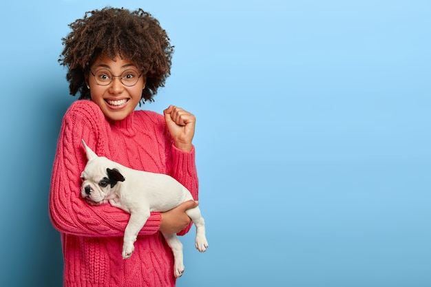Cheering dark skinned female happy to become owner of small pedigree puppy, carries french bulldog on hands