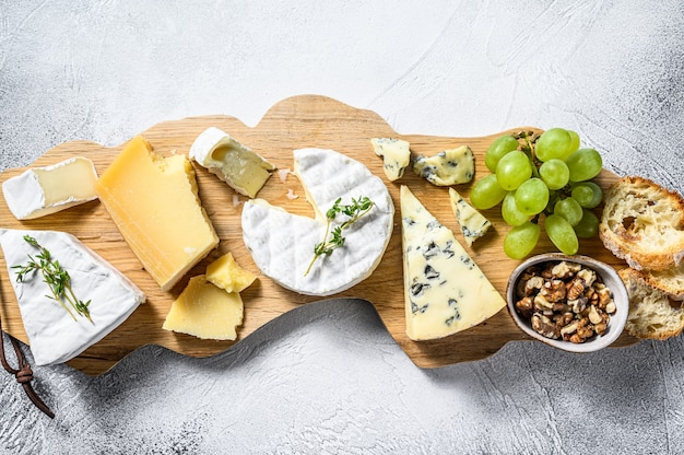 Cheese board with french camembert, brie, parmesan and blue cheese, grapes and walnuts