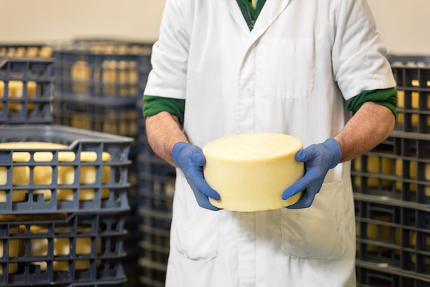 Cheese maker holding cheese wheel at the cheese storage during the aging process.