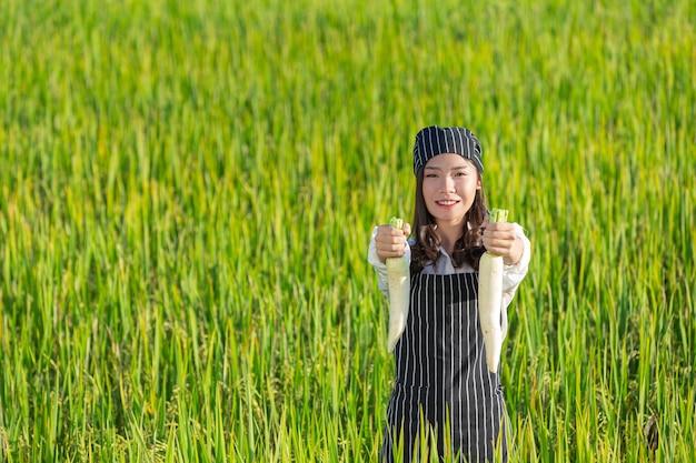 유기 농장에서 신선한 농산물을 수확하는 요리사