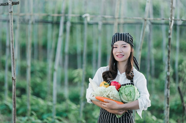 Chef harvesting fresh produce off organic farm