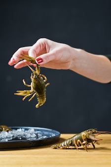 The chef holds a live crayfish.