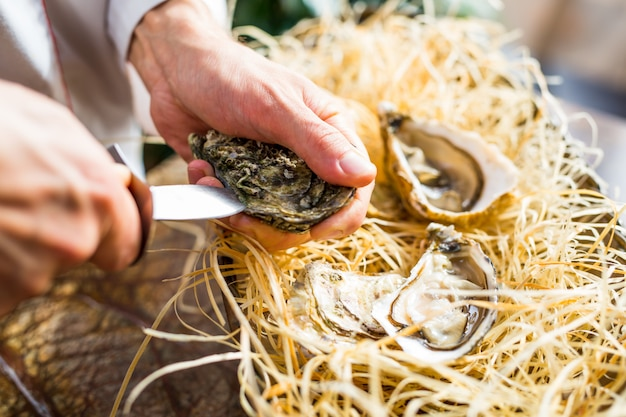 Chef opens fresh oyster in a restaurant